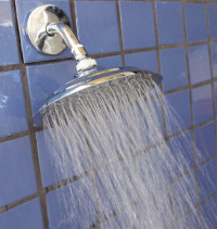 8 inch Rainshower - Product Image